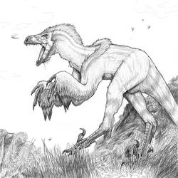 Feathered Raptor by All-Crazy-Reptiles