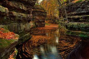 Swirls upon Swirls by VFrance