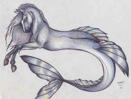 Hippocampus by who-stole-MY-name