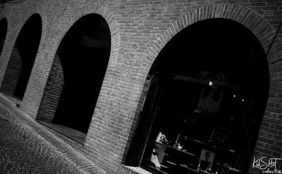 Corridonia by sAARGe