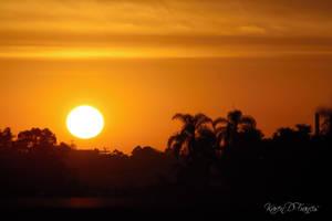 Tropical Sunrise by KarenDFrancis