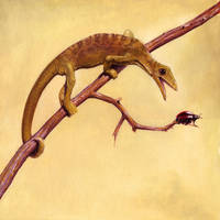 Megalancosaurus by Rolandi
