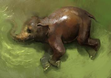 Elephant Study by vladgheneli
