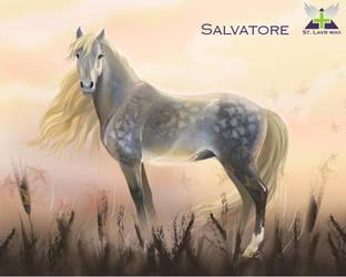 Salvatore by olllga81