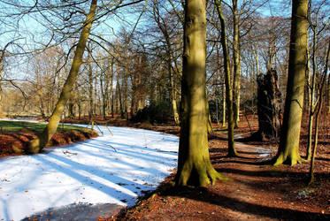A winter walk at 's-Graveland by jchanders