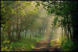 On a hazy June morning by jchanders
