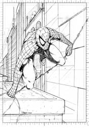 Pencil: Spider-man by redgvicente