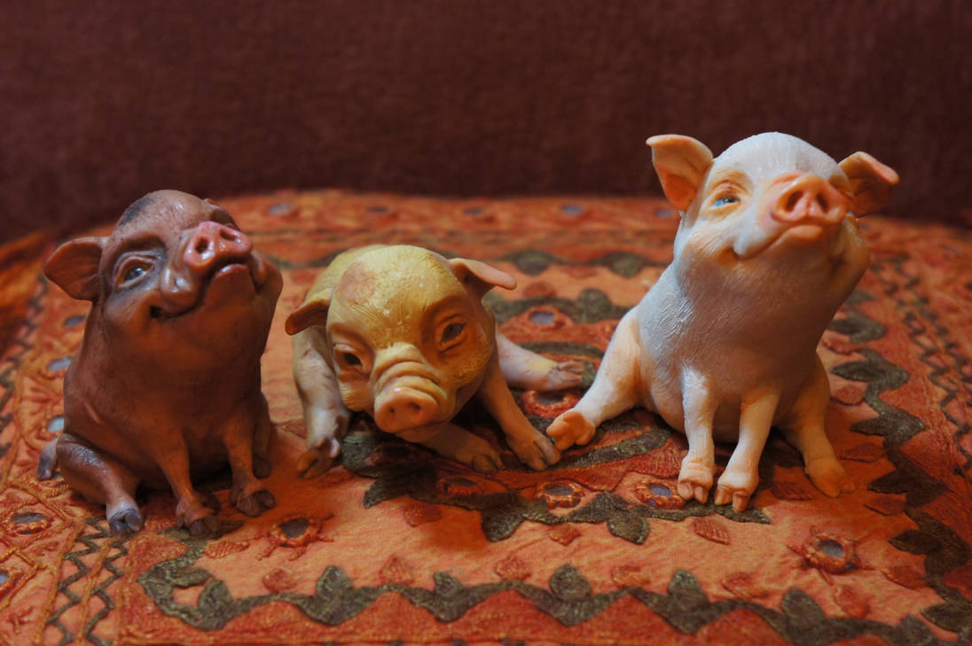The Pigs by MarylinFill
