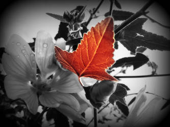 And the last leaf fades by ImmortalProduction