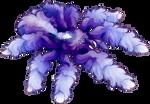 Blueberry by AlphaStryx