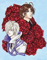 Roses by raerae