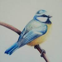 Little Bird by Leryda