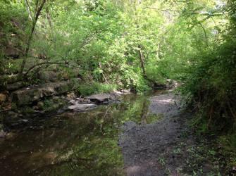 Hidden Creek by DarkAcey