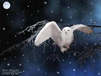 Winter's-Night-Owl by Glamourcat