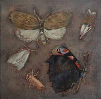Insects by DawidZdobylak