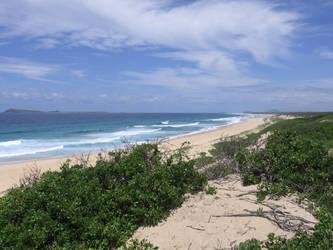 7 mile beach by WILKAT2