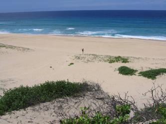 7 mile beach 2 by WILKAT2
