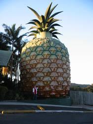 Pineapple by WILKAT2