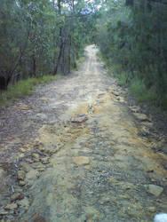 Driveway by WILKAT2