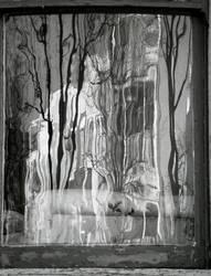 fan window by monkfu