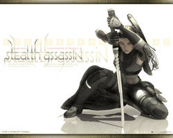 Stealth Assassin by strobes