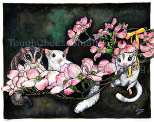 Blossoms and Gliders by Ned-No-D