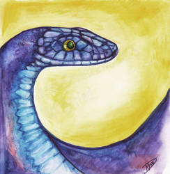 Rat Snake by Ned-No-D