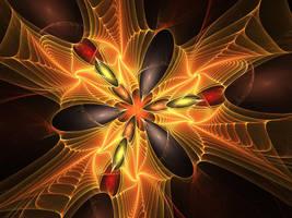 Supernova by laurengary