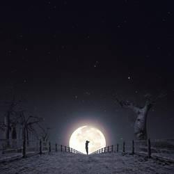 Moon by luisbeltran