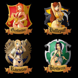 Hogwarts house's by Durane59