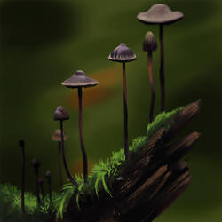 40-day challenge #2 - Fungi and plants - Day 19 by DesigningLua