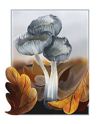 Toxic mushrooms by DesigningLua