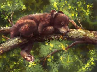 Bear cub by DesigningLua