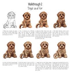 Walkthrought 2: Drawing Fur by DesigningLua
