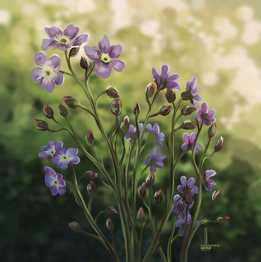 Forget-me-nots by DesigningLua