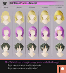 Hair Reference Sheet by AkiraAlion