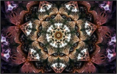 Rays by Primitive-Mind