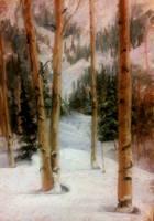 Woodland Winter by MountainInspirations