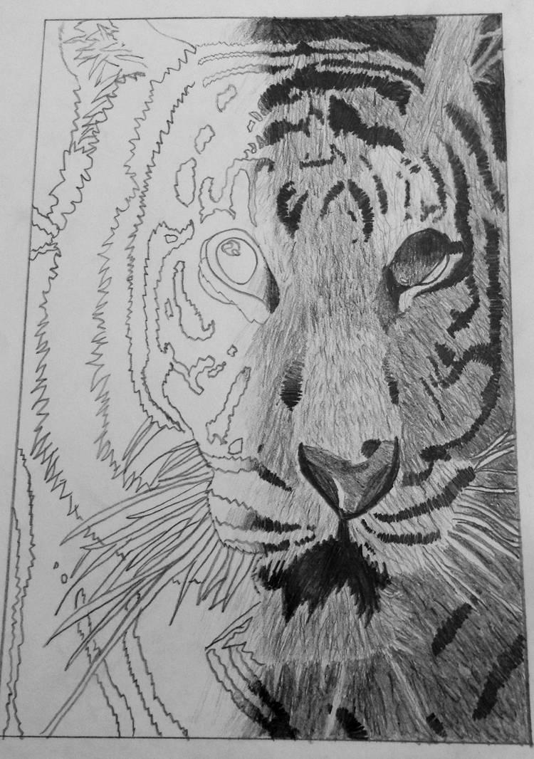My Hyper Realistic Animal Drawing Roar By Soulspiretwolf On Deviantart
