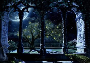 Secret Garden by RankaStevic