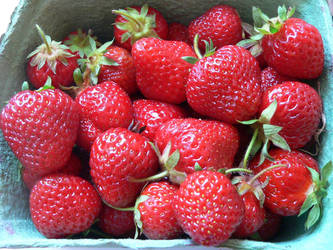 Strawberries by TakingBackSusan