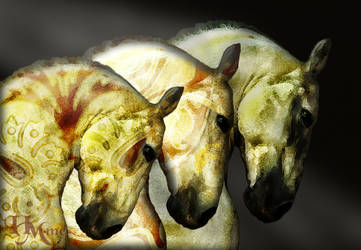 Moroccan Horses by Anuden