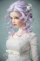 Winter rose 1 by amadiz