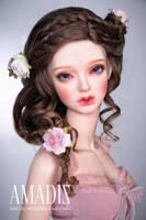 Dreamy bloom by amadiz