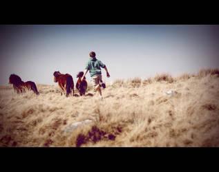 Me Run With Horses by Matt-ikus