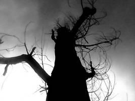 Darkness Falls by coffin-fodder