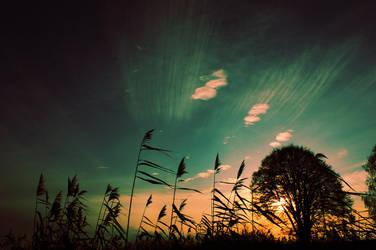 Sunset II by DppArt