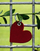 A heart for July rain by sternenfern