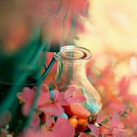 Little Bottle by sternenfern