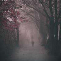 Ghosts by sternenfern